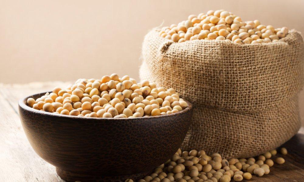👩⚕️ Alergia alimentaria a la soja | Galletas Gullón 🍪